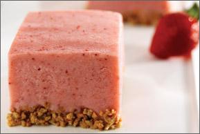 yogurt squares