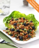 bc-59-blueberry-wheat-salad-300x371