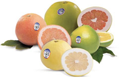 img-grapefruit-varieties